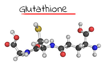 antioxidant-glutathione