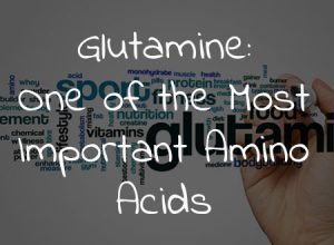 Glutamine: One of the Most Important Amino Acids