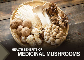 Health Benefits of Medicinal Mushrooms