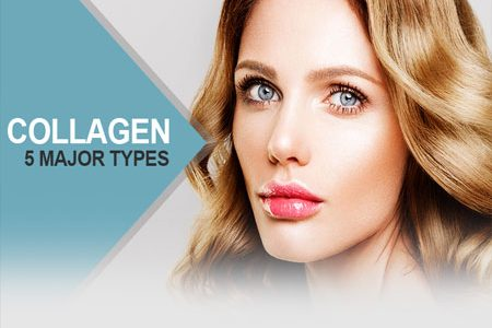 The 5 Major Types Of Collagen