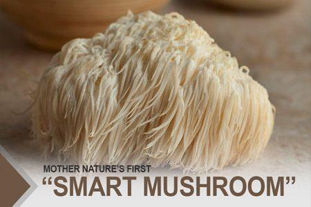 "Mother Nature's First ""Smart Mushroom"""
