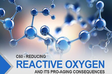 Reducing Reactive Oxygen Species And Its Pro-Aging Consequences