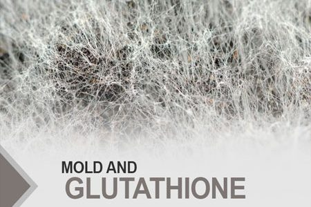 Mold and Glutathione